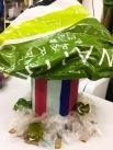 Paulina's mushroom